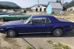 Blue-Cougar-900-09-15